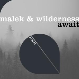 Album Await from Wilderness
