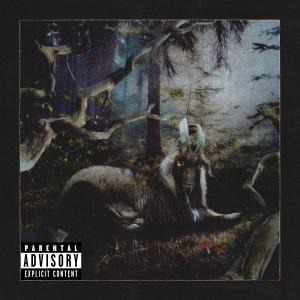 Album FEET OF CLAY (Explicit) from Earl Sweatshirt