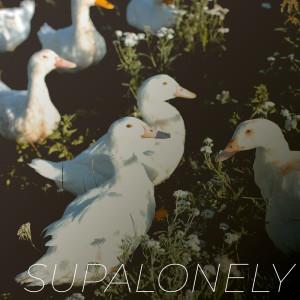 Vibe2Vibe的專輯Supalonely