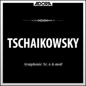Album Tchaikovsky: Symphonie No. 6 from Slowakische Philharmonie