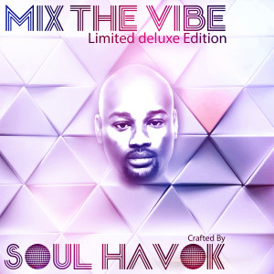 Album Mix The Vibe from Soul Havok