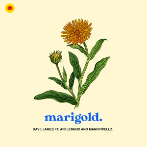 Album Marigold from Dave James