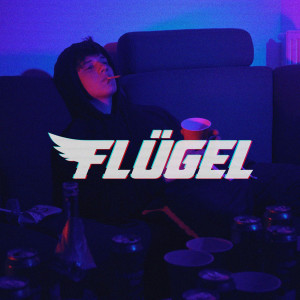 Album Flügel from Raymond