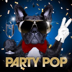 Album Party Pop from Robbie Nevil