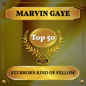 Album Stubborn Kind of Fellow from Marvin Gaye