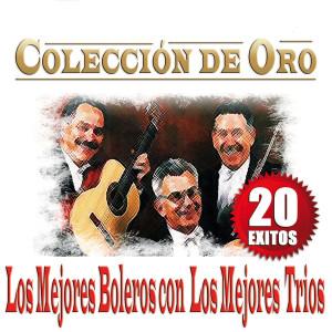 Album Los Mejores Boleros Con Los Mejores Trios -20 Exitos Colección De Oro from Varios Artistas