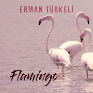 Album Flamingo from Erman Türkeli