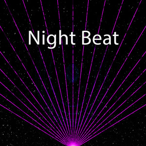 CDM Project的專輯Night Beat