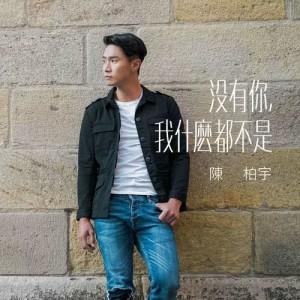 陳柏宇的專輯沒有你, 我甚麼都不是