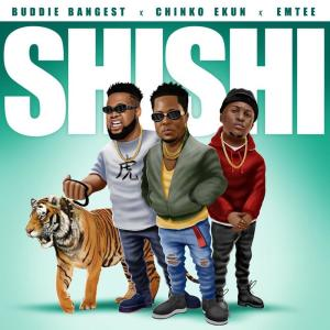 Album SHISHI (Explicit) from Emtee