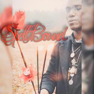 Album Spellbound from Swade