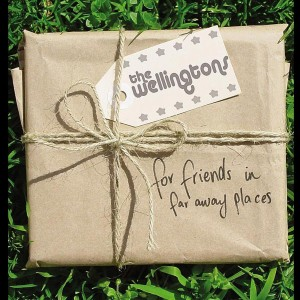 Album For Friends In Far Away Places from The Wellingtons