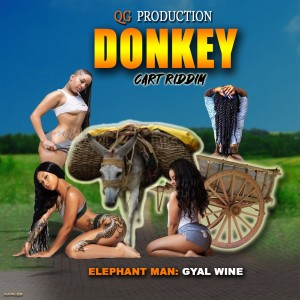 Album Gyal Wine (Explicit) from Elephant Man