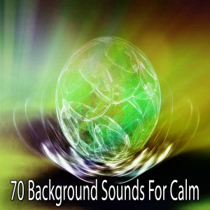 Album 70 Background Sounds for Calm from Massage Therapy Music