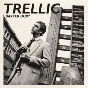 Album Trellic from Baxter Dury