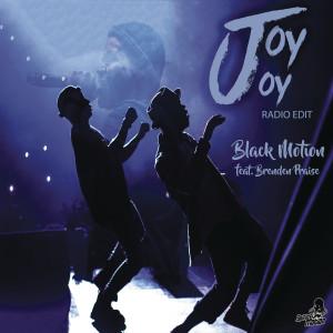 Album Joy Joy (Radio Edit) from Brenden Praise