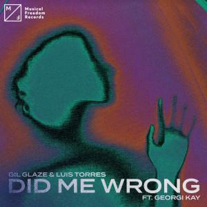 Album Did Me Wrong (feat. Georgi Kay) from Gil Glaze