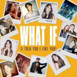 What If (I Told You I Like You) dari Mackenzie Ziegler