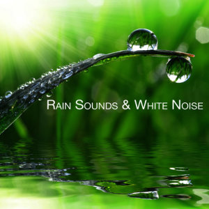 Listen to A Good Soaking song with lyrics from Rain Sounds & White Noise