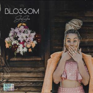 Album Blossom - EP from Sha Sha