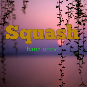 Album Bana Ncino from Squash