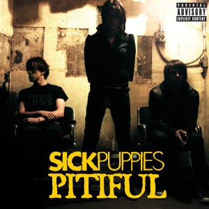 Pitiful 2008 Sick Puppies