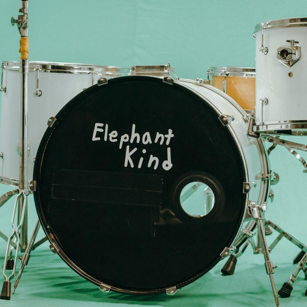 Pleaser 2019 Elephant Kind