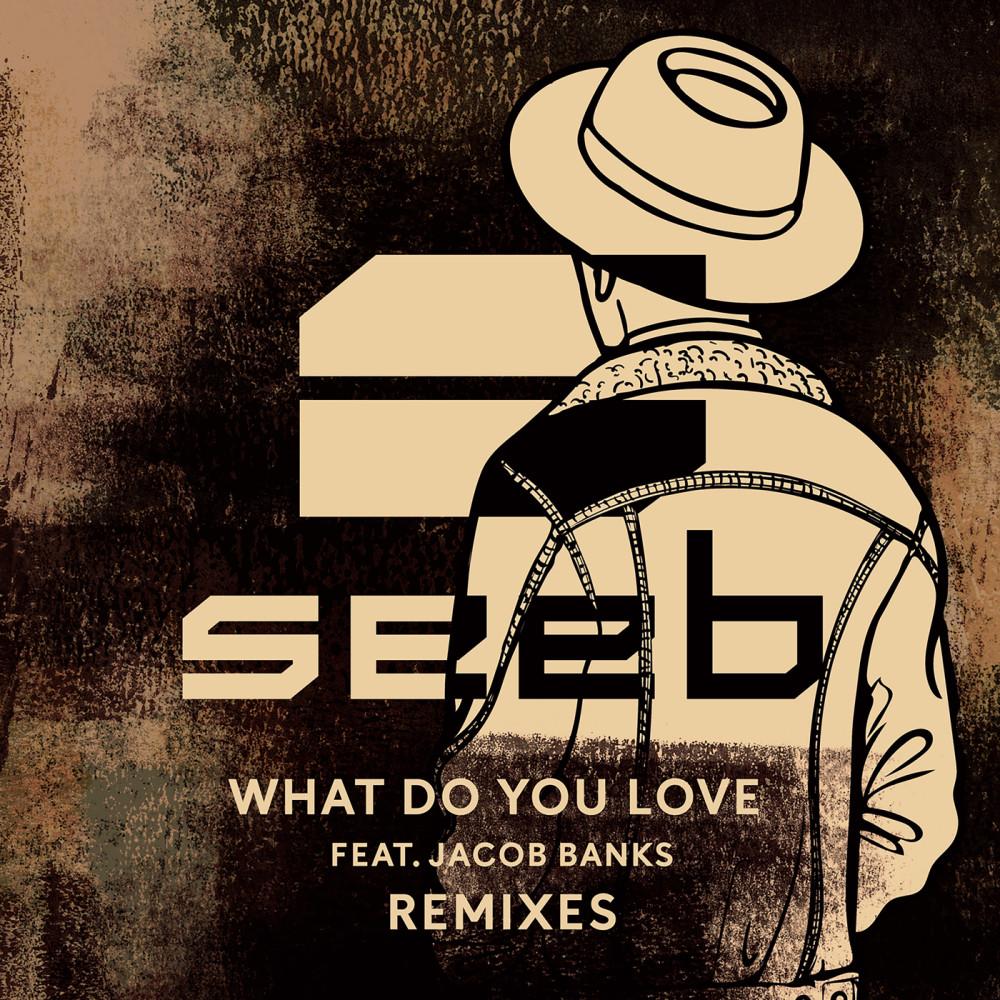 What Do You Love (Broiler Remix) 2017 Seeb; Jacob Banks