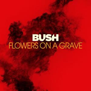 Album Flowers On A Grave from Bush
