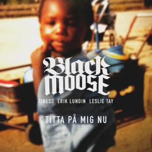 Album Titta på mig nu (feat. Leslie Tay, Finess, Erik Lundin) from Finess