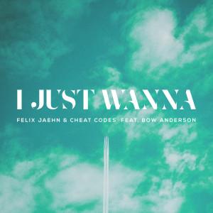 Album I Just Wanna from Felix Jaehn