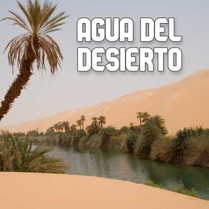 Agua Del Desierto
