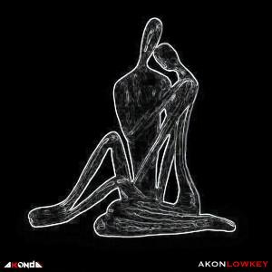 Akon的專輯Low Key