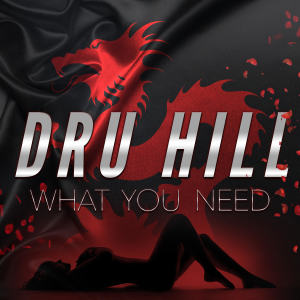 Album What You Need from Dru Hill