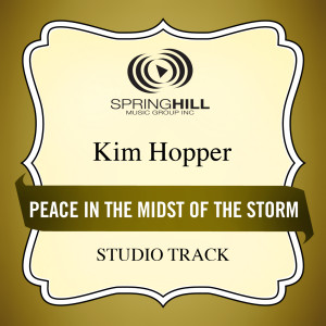 Peace In The Midst Of The Storm 2006 Kim Hopper