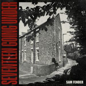 Album Spit Of You from Sam Fender