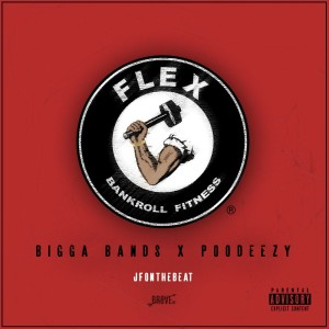 Album Flex (All We Do) - Single from Poodeezy
