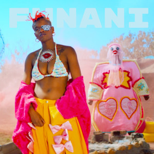 Album Funani from Toya Delazy