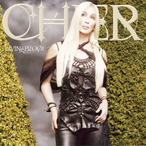 Listen to Different Kind of Love Song song with lyrics from Cher