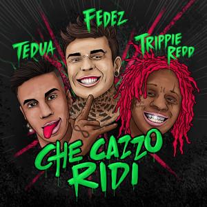 Album Che cazzo ridi from Tedua