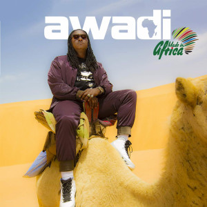 Album Made In Africa from Didier Awadi