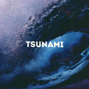 Album Tsunami from DJ Shadow