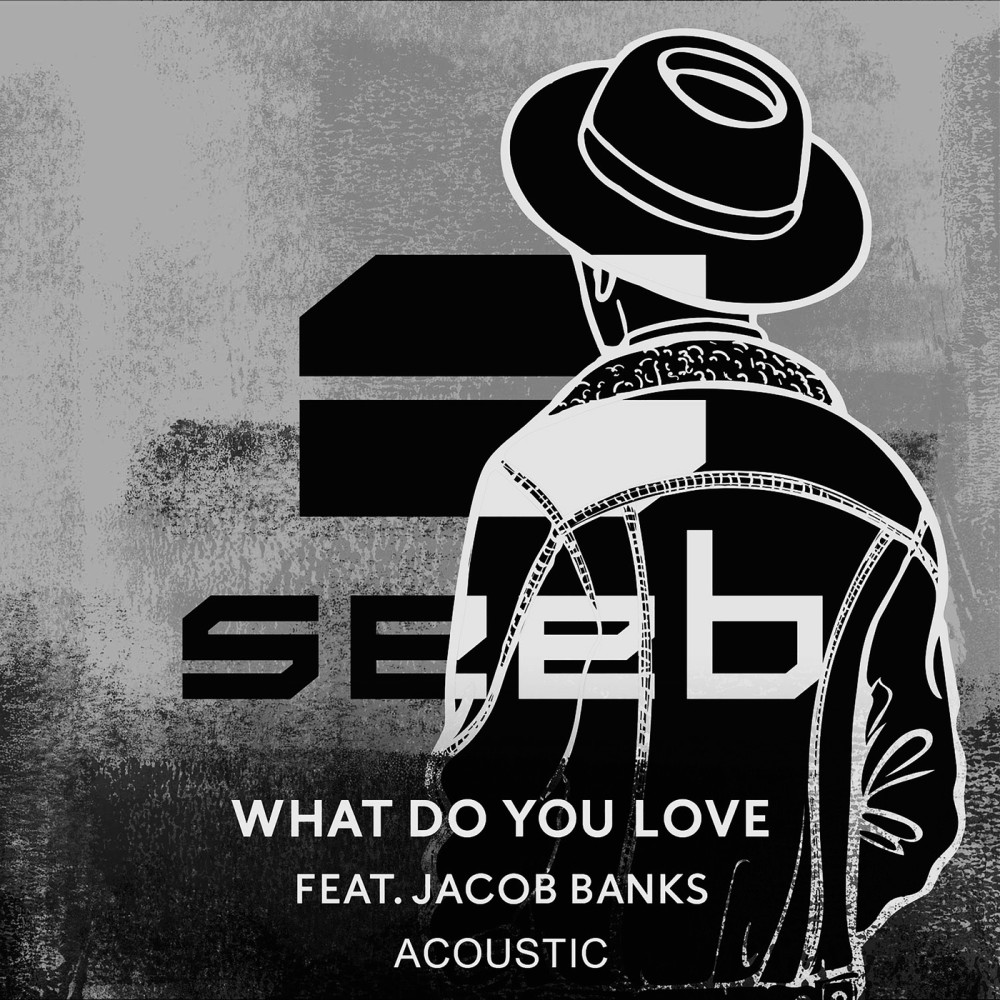 What Do You Love 2016 Seeb; Jacob Banks