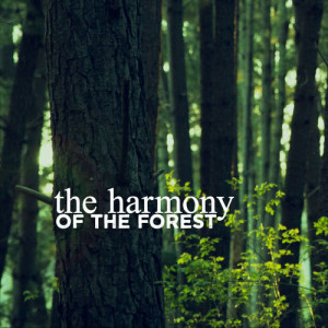 Outside Broadcast Recordings的專輯The Harmony of the Forest