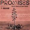 Download Lagu Calvin Harris - Promises