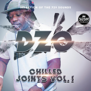 Album Chilled Joints, Vol. 1 (Selection of the 729 Sounds) from Dzo