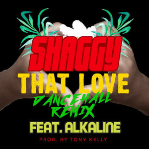 Listen to That Love (Dancehall Remix) song with lyrics from Shaggy