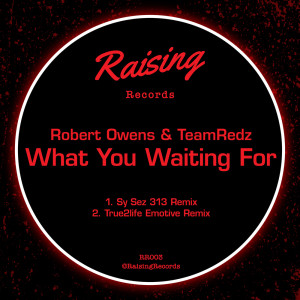 Album What You Waiting For from Robert Owens