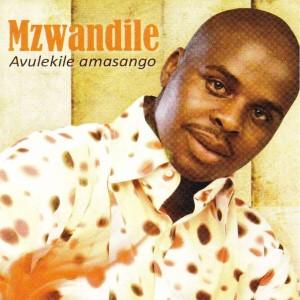 Album Avulekile Amasango from Mzwandile