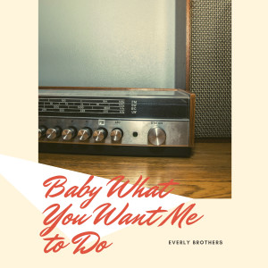 Album Baby What You Want Me to Do from Everly Brothers